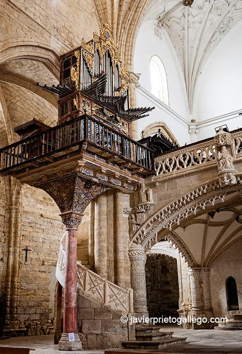 TÁMARA DE CAMPOS (Palencia)