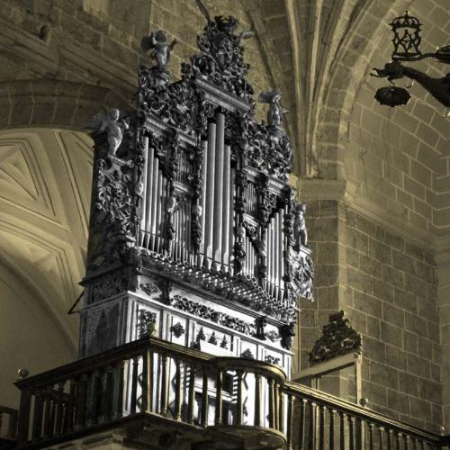 Tordesillas, Iglesia de Santa María, órgano